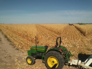 Harvest Fun Combining with Tractor