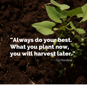 Syngenta - Always do your best